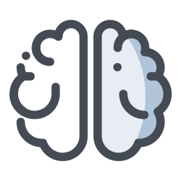 脑 icon