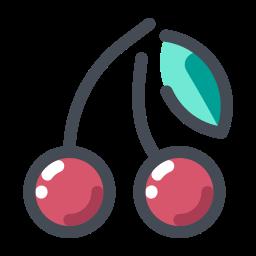 cherry -v2 icon