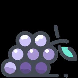 grapes -v1 icon