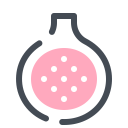 Fig Fruit icon