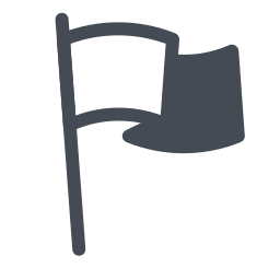 Flag Outline icon