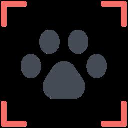 Footprint Scanning icon