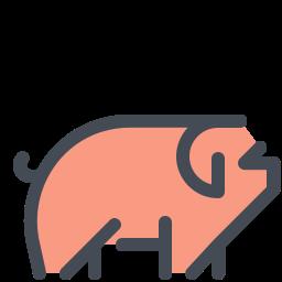 Schwein icon