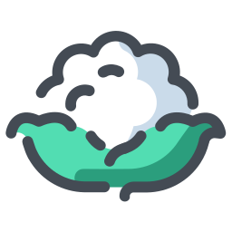 Coliflor blanca icon