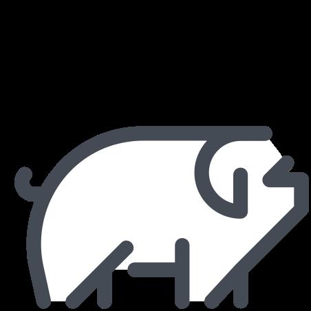 돼지 icon