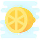 Citrus icon