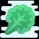 Kale icon