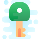 Authorization icon