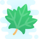 maple leaf icon