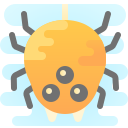Ragno icon