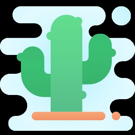 선인장 icon