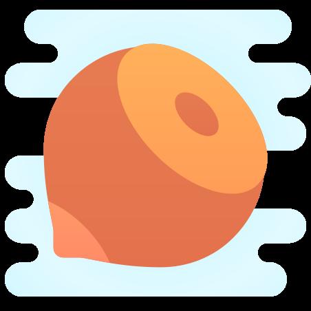 Hazelnut icon in Cute Clipart