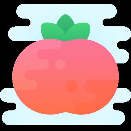 토마토 icon