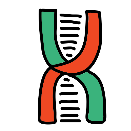 Biotechnologia icon. The Icon of Biotech is a flat 2d helix shape that you command find that represent dna. Between the helix are straight lines that go across the helix structure like steps in a step ladder.