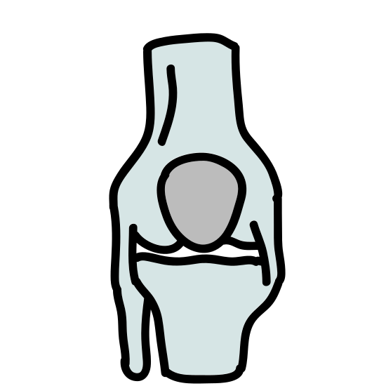 Human Bone icon. It's a logo for a human bone which looks like a leg bone.  The bone is tilting from left to right with a heart shape at the bottom left of the icon.  On the top right the bone has been broken off an is dangling from the bone.