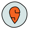 Swiggy icon