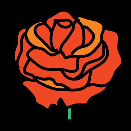 장미 꽃 icon
