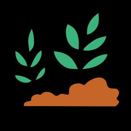 새싹 icon