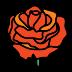 Rosa icon