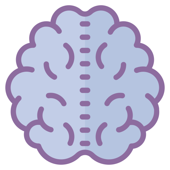 Brain icon. The brain is a important part of the human body that consists of four detailed parts called hemispheres. The brain is spongy, and meaty in appearance, and is very complex.