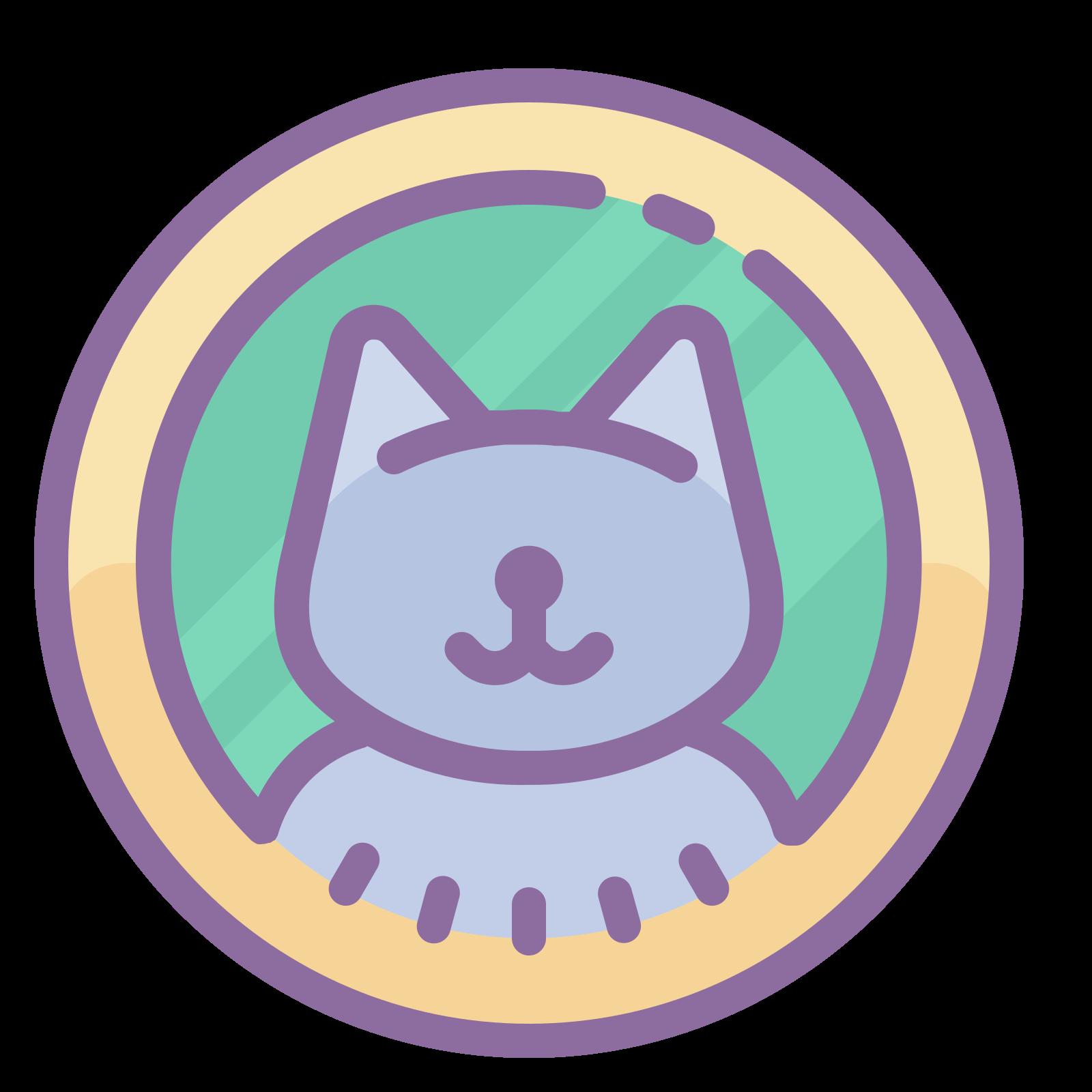 Profil kota icon