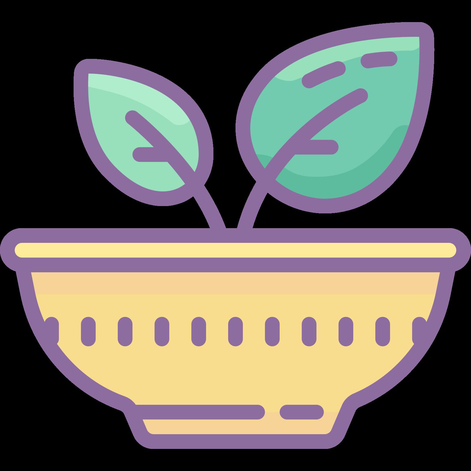 Gesundes Essen icon