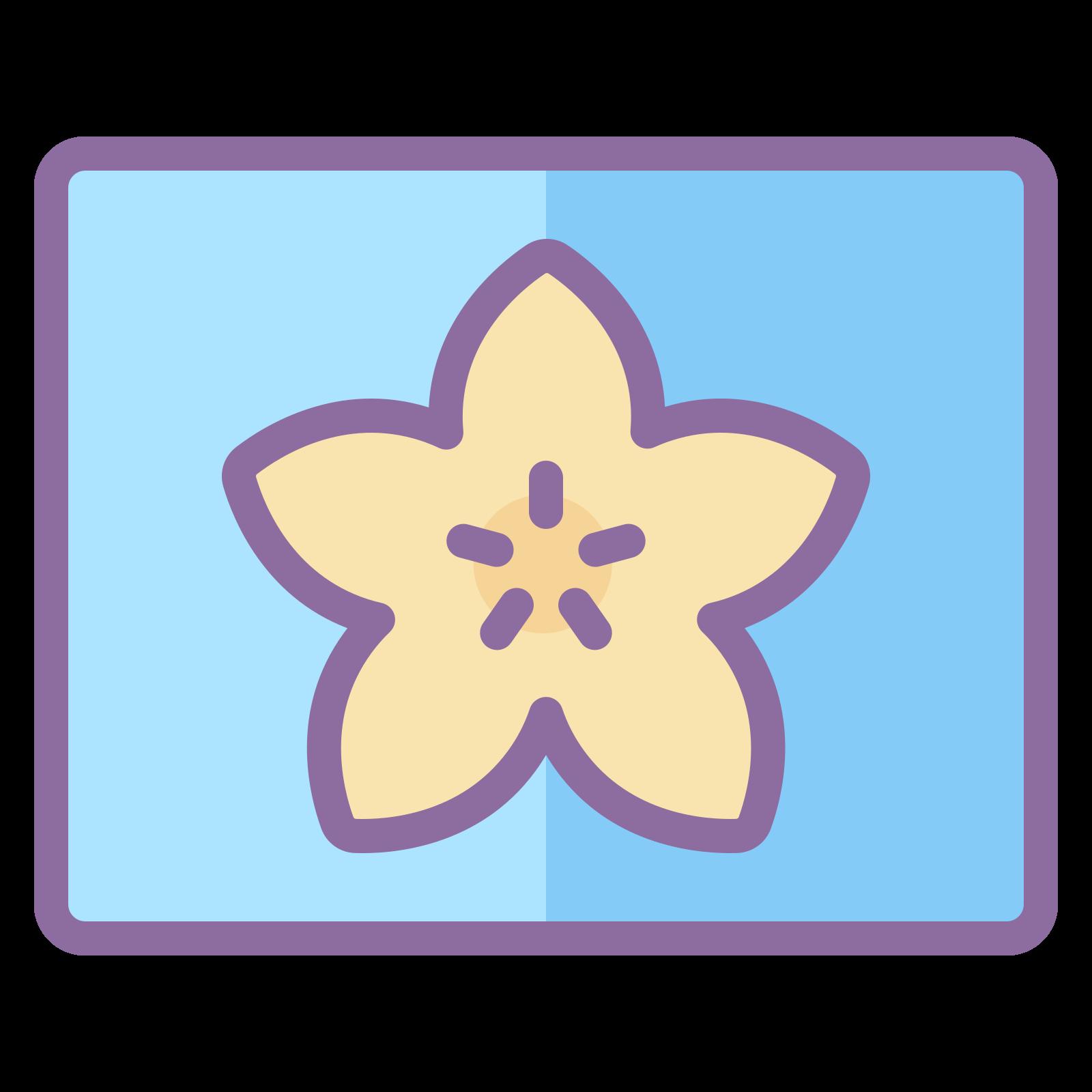 大アイコン icon. The Large Icon has a flower like shape with five rounded point.  In the center there is another 5 points drawn in somewhat lines from the center.  The flower shape is enclosed in a square or a box.