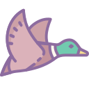 Flying Duck icon
