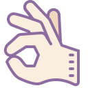 OK Sign Hand icon