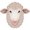 Ewe icon