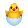 Hatching Chick icon