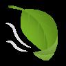 Leaf Fluttering In Wind icon