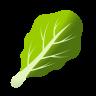 Leafy Green icon