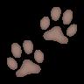Paw Prints icon