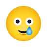 Smiling Face With Tear icon