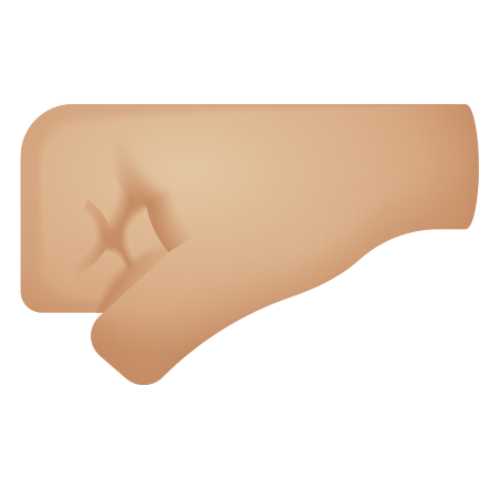 Left Facing Fist Medium Light Skin Tone icon