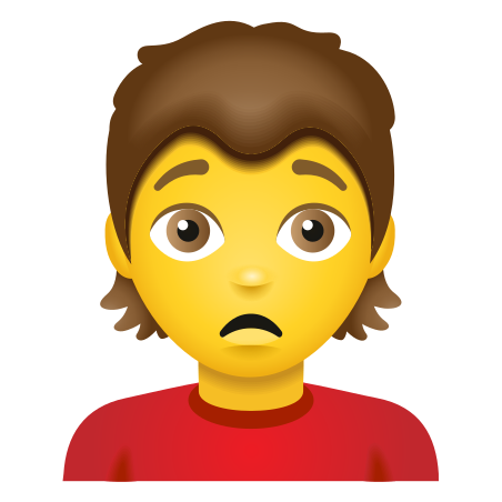 Person Frowning icon