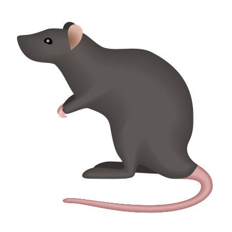 Rat Icon Free Download Png And Vector When designing a new logo you can be inspired by the visual logos found here. rat icon free download png and vector