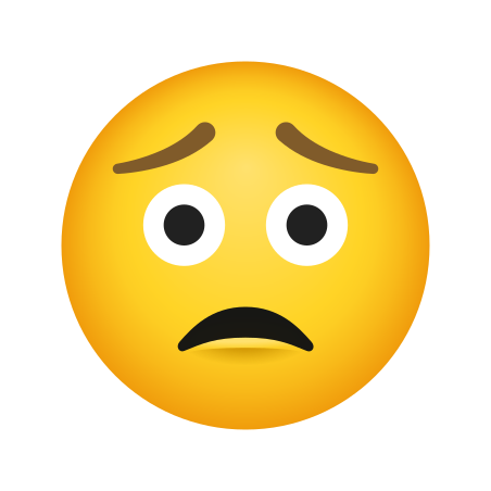 Worried Face icon
