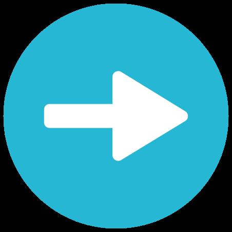 오른쪽 화살표 icon