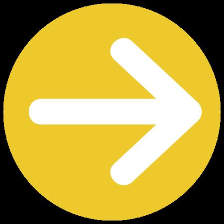 Large flèche droite icon