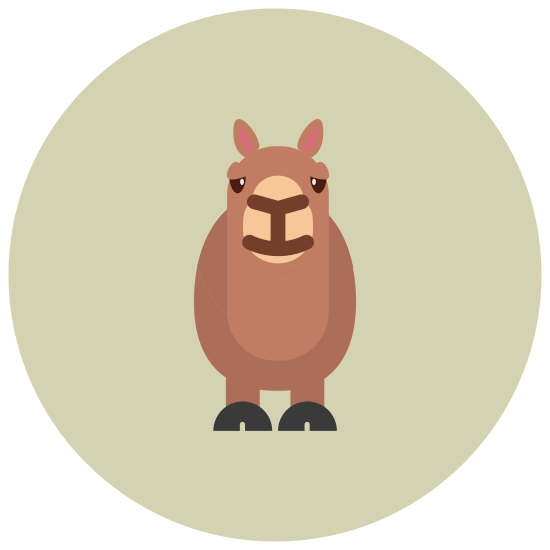 Llama icon. The logo is the face of a llama, looking directly on, it is not in profile.  The llama has two long ears with rounded tips that are pointing upwards.  It has two eyes and eyebrows and it appears to be smiling.