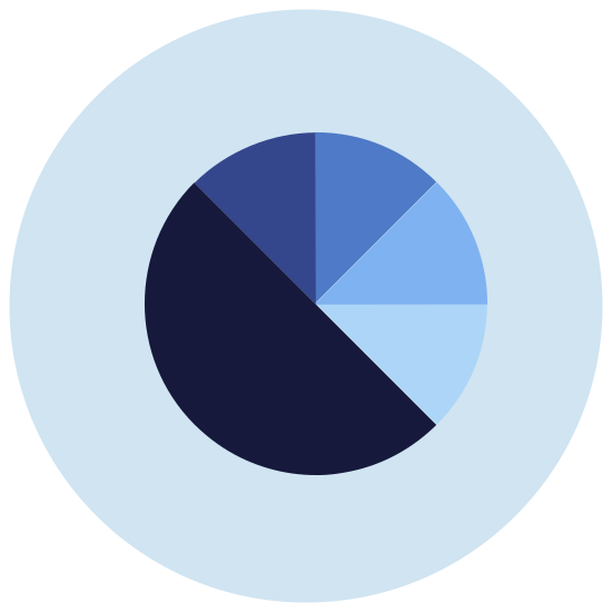 Chart icon. It is a pie chart divided into three section. The top left quarter is its own section, then the rest of the chart is divided in half by a diagonal line going from the center of the circle to the bottom right. There is a smaller slice of the chart superimposed over the chart in the upper right.