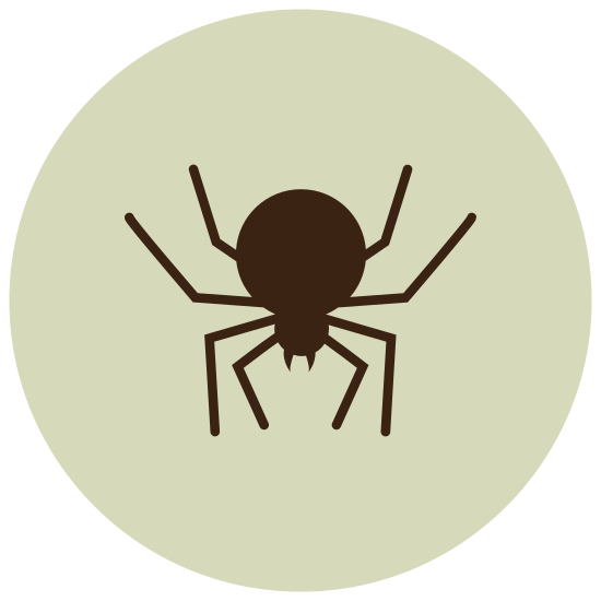 Pająk icon. This logo is of an arachnid, or spider. It features two incisors, a rounded head, and a slightly elongated body. It was four slightly bent legs on each side of its body.