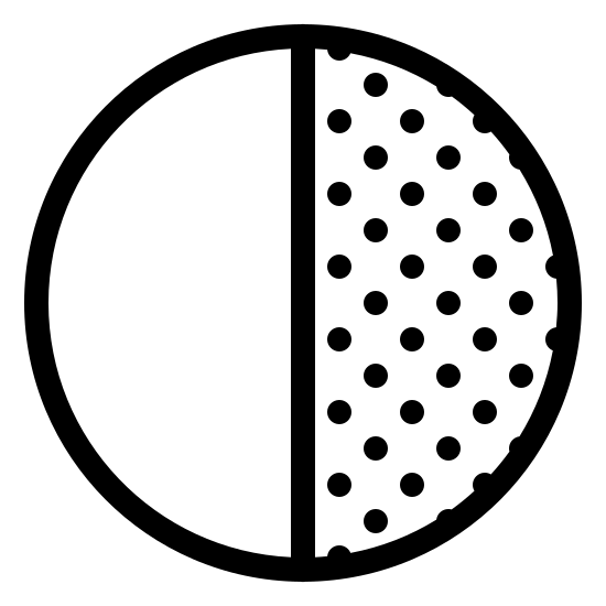 Ostatnia kwadra icon. This is an icon representing the last quarter. It is a circle split in half with a vertical line. The left side is blank and the right side has many dots in it making it look shaded.