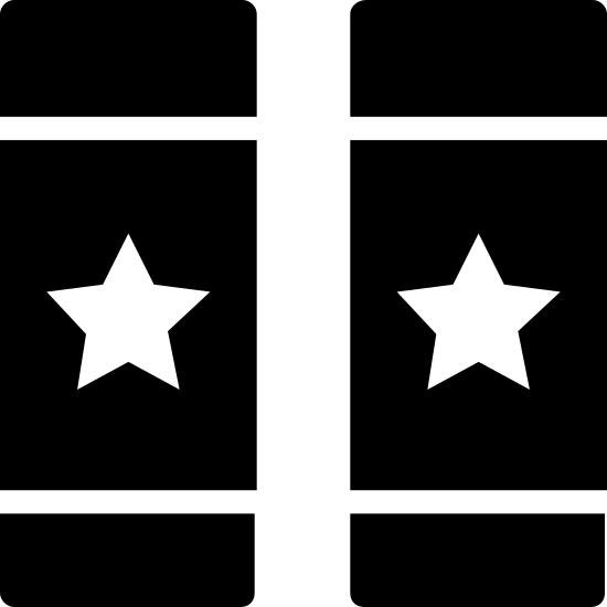 Elective icon. Two identical, vertically oriented rectangles are placed side by side. In each rectangle, there is a single horizontal line at the top. Beneath that, there is a star. Finally, at the bottom, two identical horizontal lines are aligned parallel to one another. The inside of each rectangle is the same.