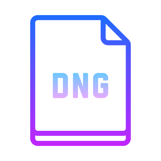 DNG icon. This is a picture of a piece of paper or a note with the top right hand corner folded inward on top of the paper. in the center are the letters DNG all capital.