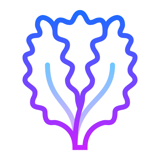 Lettuce icon. The image is an outline of a single head of lettuce. Two leaves open on either side of the plant, revealing the head located centrally inside the pair. The leaves have long vertical stripes.