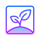 Apple Seed icon