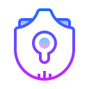 Security Lock icon